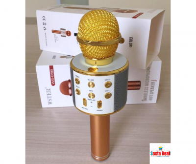 Wster WS-858 Portable Bluetooth Speaker Karaoke Microphone-C: 0216